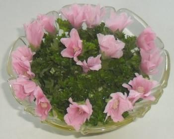 salat-med-stokroser